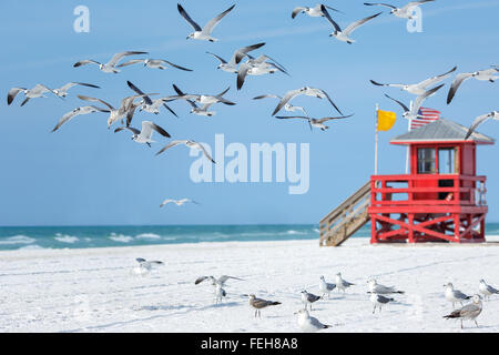 Red wooden lifeguard hut on an empty morning beach - Stock Photo