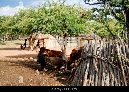 Himba village with traditional huts near Etosha National Park in Namibia, Africa - Stock Photo