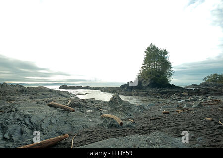 Botanical Beach afternoon, Port Renfrew, BC - Stock Photo