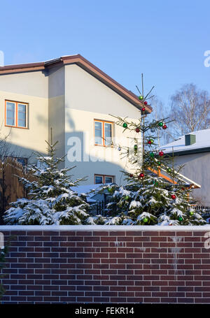 VILNIUS, LITHUANIA - JANUARY 02, 2016: Christmas fir tree in a winter garden of the rural house. Holidays came to - Stock Photo