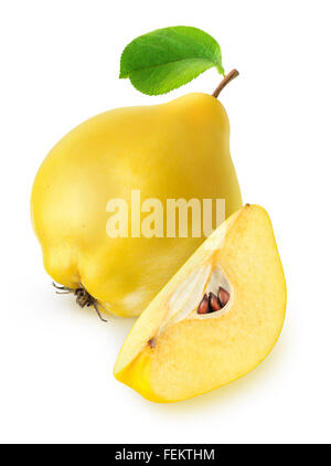 Quince fruit isolated on white with clipping path - Stock Photo