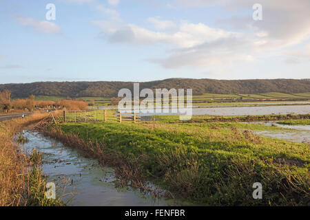 Flooded farmland in Somerset England - Stock Photo