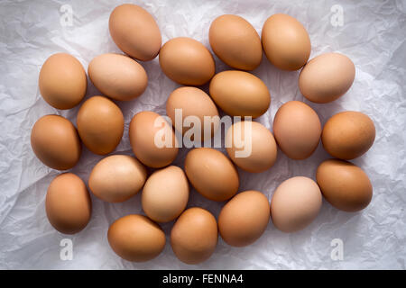 chicken eggs flat lay still life with food stylish fresh raw ingredient poultry healthy cholesterol protein vitamin - Stock Photo