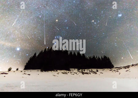 The Milky Way over the winter mountain landscape with pine trees in the foreground. Geminids Meteor Shower. Falling - Stock Photo
