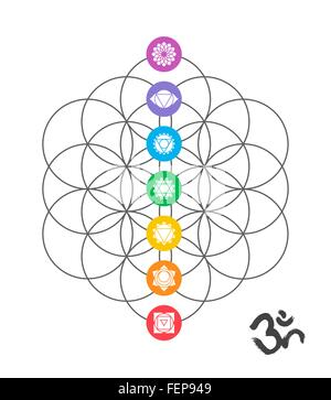 Colorful icons, main chakras on flower of life. Sacred geometry illustration with handmade om calligraphy decoration. - Stock Photo