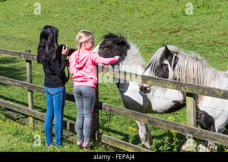 Two young girls stroke the horses' muzzles over a fence to a field of horses - Stock Photo