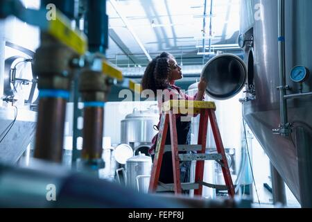 Mid adult woman in brewery on stepladder looking into conical fermentation tank - Stock Photo