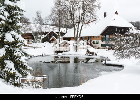 Typical black forest houses - Stock Photo