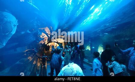 People In Dubai Aquarium And Underwater Zoo - Stock Photo