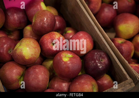 Apples for sale at an indoor market in Williamstown, Massachusetts. - Stock Photo