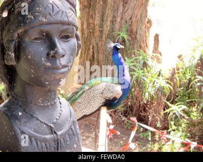 Peacock In Garden, Weathered Sculpture - Stock Photo