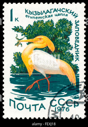 RUSSIA - CIRCA 1976: a stamp printed in Russia shows bird Cattle Egret - Stock Photo