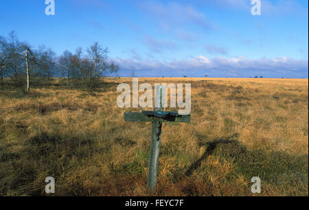 BEL, Belgium, high-moor Hohes Venn, cross  BEL, Belgien, Hochmoor Hohes Venn, Kreuz - Stock Photo