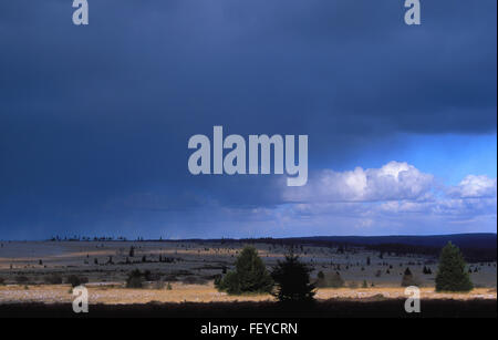 BEL, Belgium, high-moor Hohes Venn, thunderstorm clouds  BEL, Belgien, Hochmoor Hohes Venn, Gewitterwolken - Stock Photo