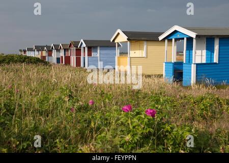 Colourful beach huts, Skanör Falsterbo, Falsterbo Peninsula, Skåne, South Sweden, Sweden, Scandinavia, Europe - Stock Photo