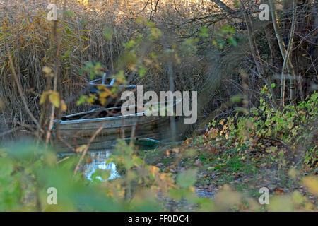 Rowing boat resting under tree on lake in autumnal evening sun - Stock Photo