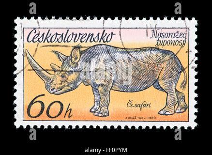 Postage stamp from Czechoslovakia depicting a rhinoceros - Stock Photo