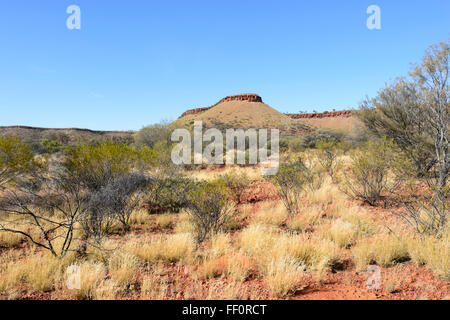 Bush near Alice Springs, Northern Territory, Australia - Stock Photo