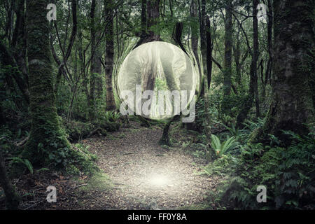 Orb glowing in forest - Stock Photo