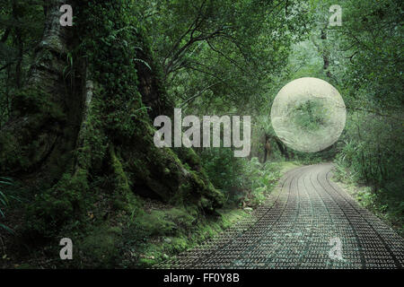 Glowing orb floating in forest over binary code path - Stock Photo