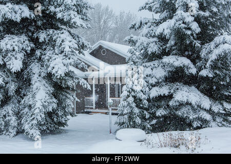House and trees in snowy front yard - Stock Photo