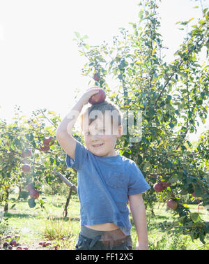 Boy balancing apple on head in orchard - Stock Photo