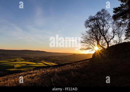 Teesdale, County Durham. Wednesday 10th February 2016, UK Weather.  Clear skies this morning meant it was a cold - Stock Photo