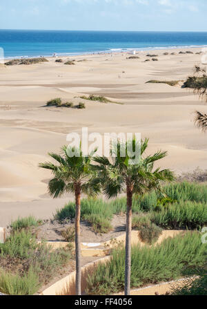 Maspalomas beach sea sand dunes footprints and person on - Standing canarias ...