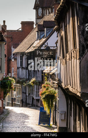 Prince of Wales (Free House) Ledbury Herefordshire England - Stock Photo
