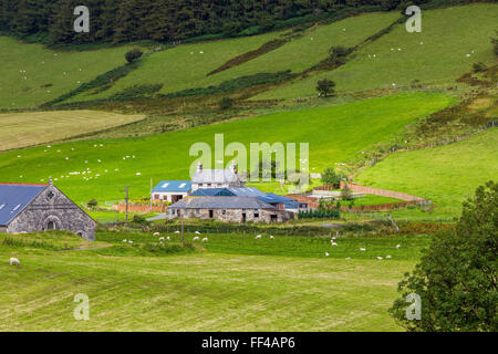 Cwm Penmachno, Conwy, Wales, United Kingdom, Europe. - Stock Photo