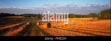 Panoramic photos of sunset light across field of cut and rolled hay near Flens in Sweden - Stock Photo