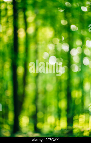 Blurred abstract bokeh natural background of spring summer forest park. - Stock Photo