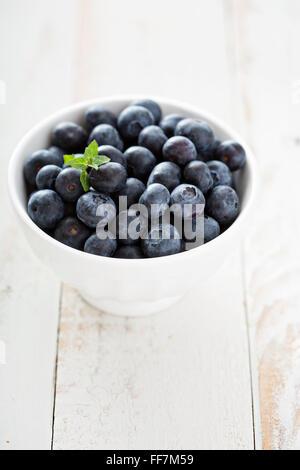 Fresh blueberries in a white bowl - Stock Photo