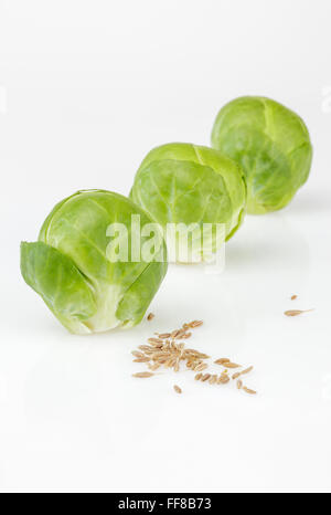 Brussels Sprouts with Cumin Seeds - Stock Photo