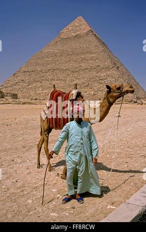 Camel driver and pyramid of Khafre, Giza, Cairo, Egypt, Africa - Stock Photo