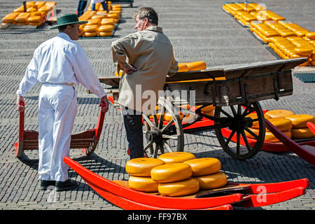 Men, cheese rounds and cart, Alkmaar Cheese Market, Holland, the Netherlands - Stock Photo