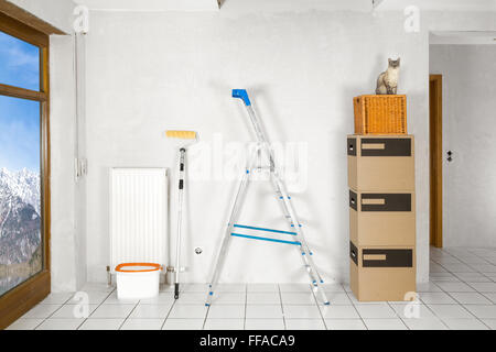 empty flat with ladder moving boxes and cat on it - Stock Photo