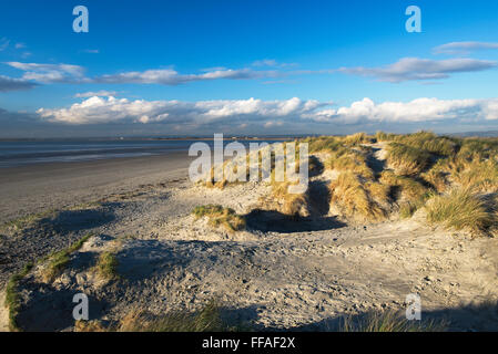 A view of the sand dunes at East Head on a sunny winter afternoon, West Wittering beach, West Sussex - Stock Photo