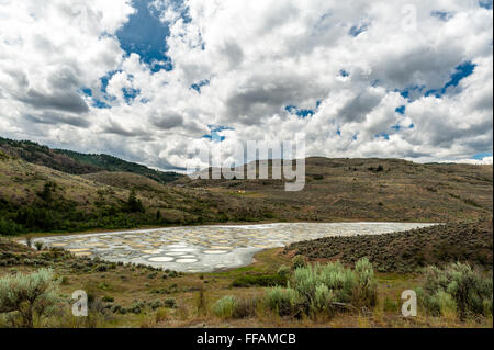 Spotted Lake in Okanagan valley, saline endorheic alkali lake located northwest of Osoyoos, Okanagan valley,British - Stock Photo