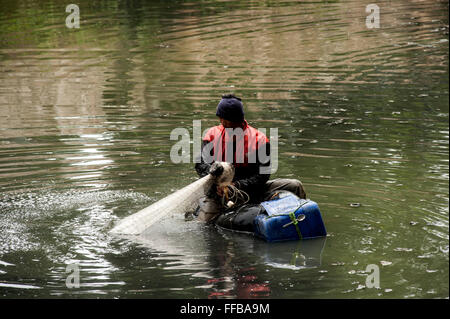 Jakarta, Indonesia. 11th Feb, 2016. Fish Hunter searching Janitor Fish (Pterygoplichthys) at River in Jakarta, Indonesia. - Stock Photo