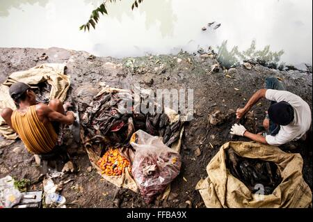Jakarta, Indonesia. 11th Feb, 2016. Fish Hunters processing their catch at River side, in Jakarta, Indonesia. Fishes - Stock Photo