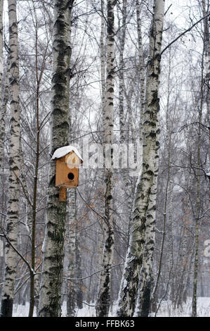 Birds' house on the birch tree in snow during the winter - Stock Photo