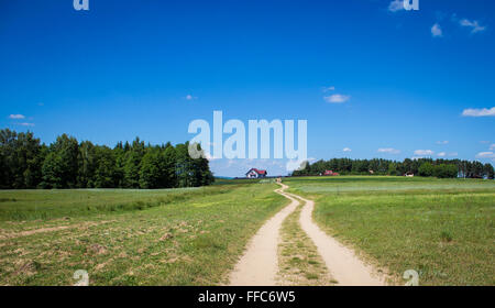 Dusty road leading towards houses near forest - Stock Photo