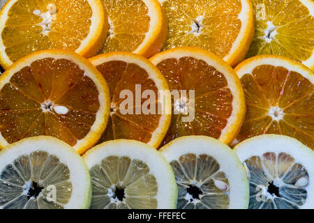 A variety of colorful fruit circles of oranges, limes, lemons and grapefruit for a background. Use it for a health - Stock Photo