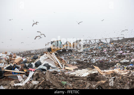 Garbage is processed and waste piled at a Calgary Regional Landfill in Alberta, Canada.  The economic and environmental - Stock Photo
