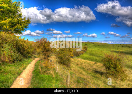 Path to Ivinghoe Beacon Chiltern Hills Buckinghamshire England UK English country view near Dunstable Bedfordshire - Stock Photo