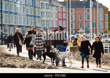 Aberystwyth, Wales, UK. 15th February 2016.  UK weather: Crowds of people out enjoying a day of  warm winter sunshine - Stock Photo