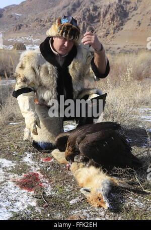 Almaty Region, Kazakhstan. 15th Feb, 2016. A berkutchi (Kazakh eagle hunter) with a golden eagle catch a fox at - Stock Photo