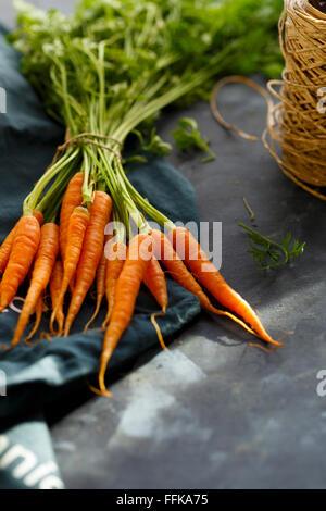 Baby Carrots, farm fresh - Stock Photo