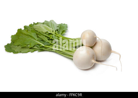 Fresh white round Daikon radish on white background - Stock Photo